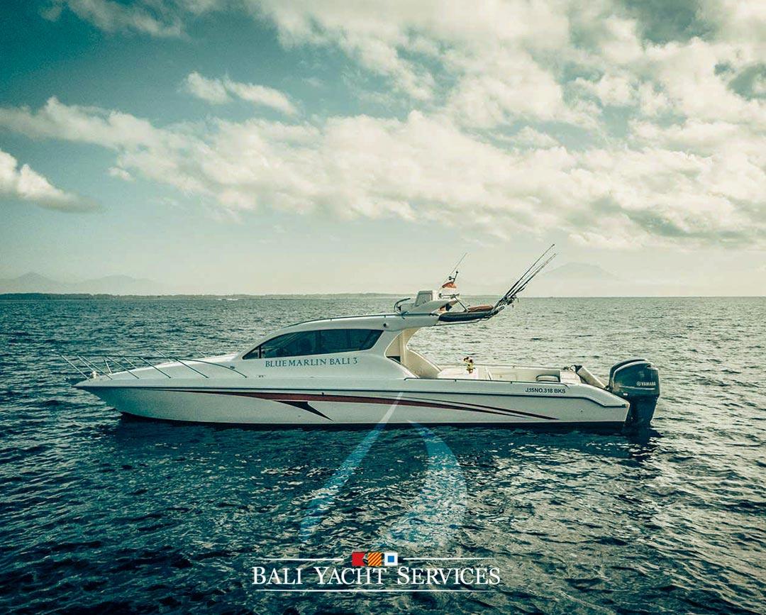 Bali Boat Rental Accura38